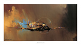 Spitfire Prints by Barrie Clark