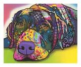 Savvy Labrador Plakaty autor Dean Russo