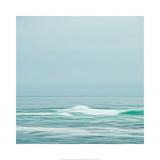Seacoast 601 Prints by David E Rowell