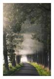 Rays of Fog Art by Lars Van de Goor