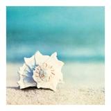 Paradise Posters by Carolyn Cochrane