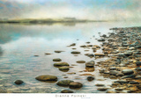 Stillness Prints by Dianne Poinski