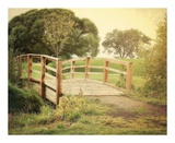 Sunday Stroll Prints by Sylvia Coomes