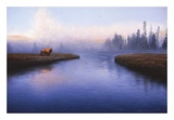 The Mist Prints by Adriano Manocchia