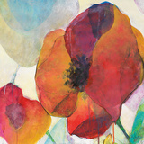 Poppy II Prints by Doug Kennedy