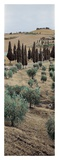 Tuscany 13 Posters by Alan Blaustein