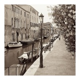 Venezia 5 Poster by Alan Blaustein