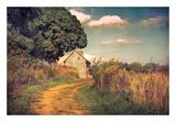Webb Farm House Posters by John Rivera