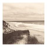 Wellfleet Dune Posters by Christine Triebert