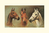 We Three Kings Posters by Susan Crawford