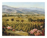 Vineyards to Vaca Mountains Prints by Ellie Freudenstein