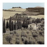 Tuscany 15 Posters by Alan Blaustein