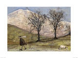 Walking with Mansfield Print by Sam Toft