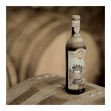 Wine 4 Posters by Alan Blaustein