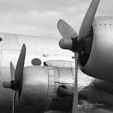 Vintage Flight I Prints by Janet Van Arsdale