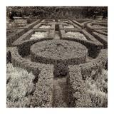 Tuscan Giardini 1 Prints by Alan Blaustein