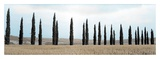 Val d'Orcia Pano 5 Print by Alan Blaustein