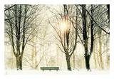 Too Cold To Sit Poster by Lars Van de Goor
