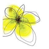Yellow Petals Four Affischer av Jan Weiss