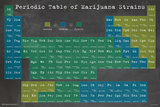 Periodic Table Of Marijuana Strains Poster