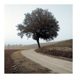 Tuscany 12 Prints by Alan Blaustein