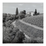 Tuscany 5 Prints by Alan Blaustein