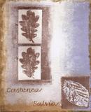 Leaf II Prints by Tiffany Budd