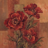 Poppies Terra Cotta Prints by Barbara Mock