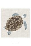 Sea Turtle I Schilderijen van Naomi McCavitt