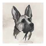 Inked Dogs IV Prints by Grace Popp