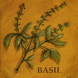 Basil Print by Kate McRostie
