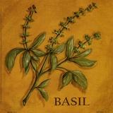 Basil Print by Kate McRostie