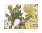 Leaf Spray II Limited Edition by Jennifer Goldberger