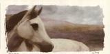 Horse On The Hill Art by Judy Mandolf