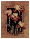 Framed Iris Poster di Barbara Mock