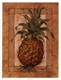Ananas Stampa di Barbara Mock