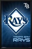 Tampa Bay Rays- Logo 2016 Print