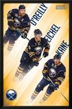Buffalo Sabres- Team 2016 Photo