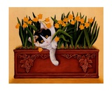 Pinot Howell Shafer Prints by Lowell Herrero