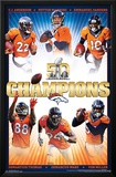 Super Bowl 50- Champions Posters