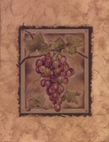 Raisin Fructus Prints by Constance Lael