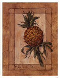 Pineapple Punch Posters by Barbara Mock