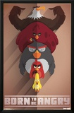 Angry Birds- Born Angry Photo