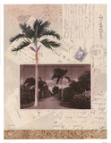 Nassau Prints by Jan Weiss