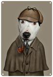 Pets Rock Detective Cartel de chapa