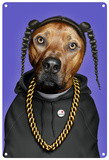 Pets Rock Rap Tin Sign