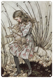 Alice in Wonderland - Alice and the Pig Blechschild