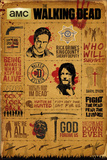 Walking Dead- Infographic Plakat