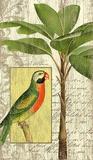 Parrot I Wood Sign