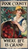 Apple Harvest Wood Sign